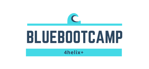 Blue Bootcamp